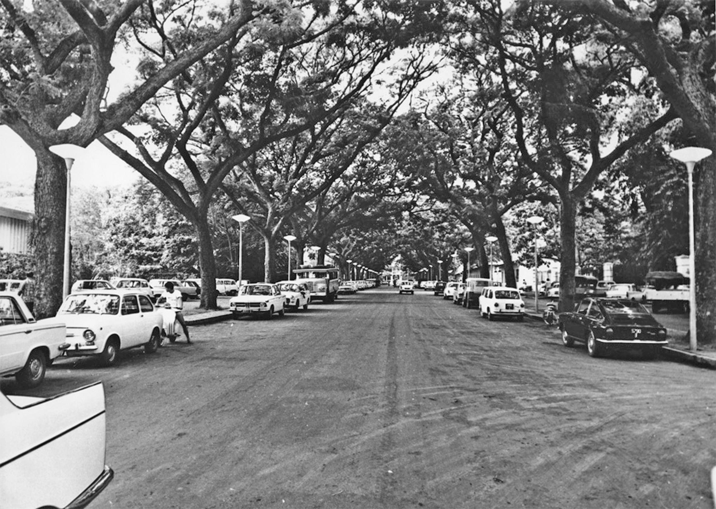 L'avenue Bruat vue du carrefour central vers la montagne en 1960