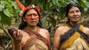 Les Indiens d'Amazonie renouvellent leurs traditions pour défendre la biodiversité