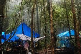 Une touriste américaine victime d'un viol collectif en Papouasie
