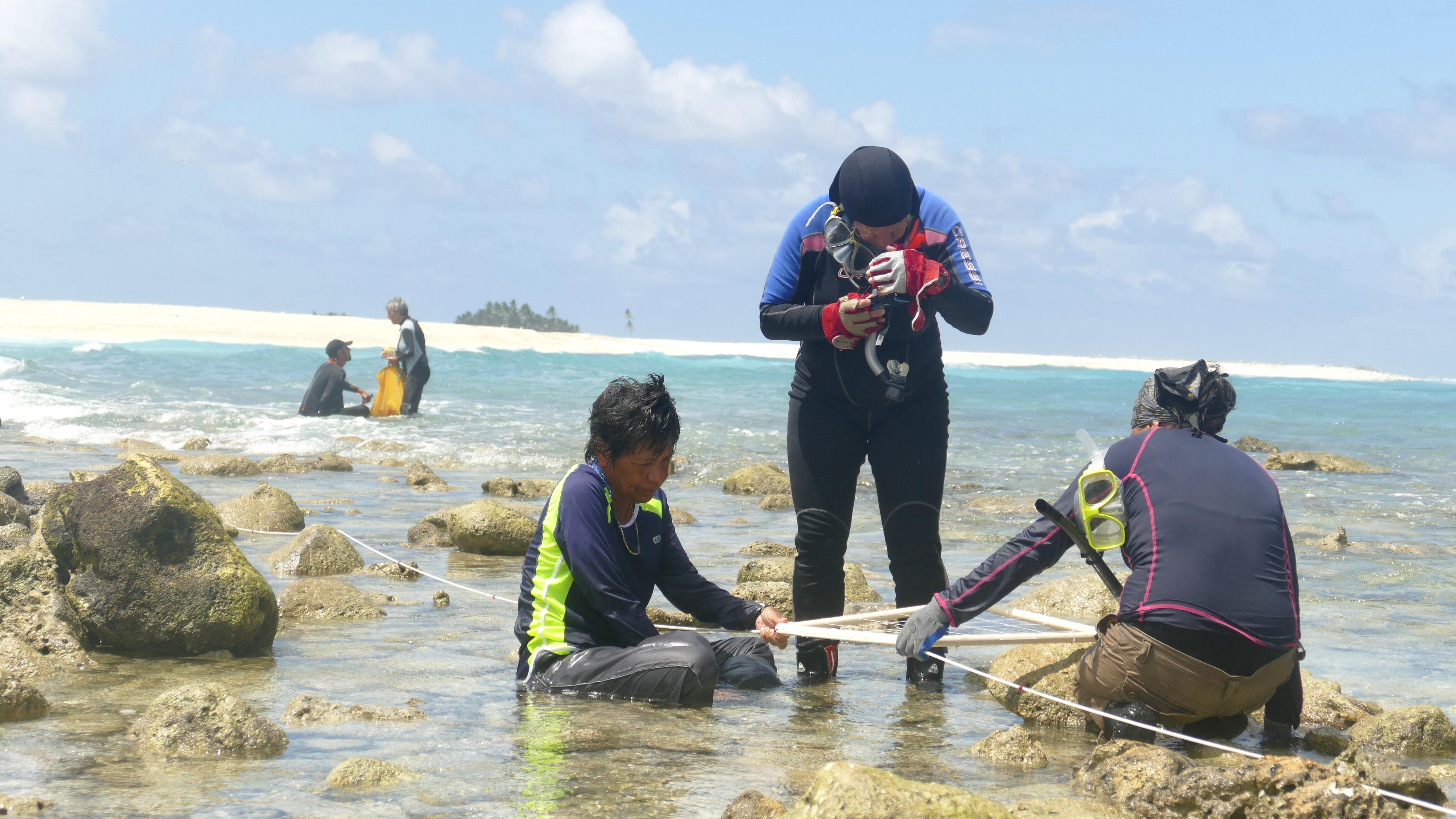 Pendant 14 jours, les biologistes marins ont collecté et identifié des espèces sur le platier corallien. Crédit : Stéphane Dugast