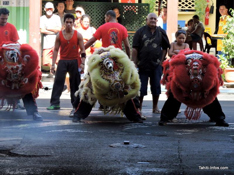 Lâcher de lions sur Papeete le 8 février prochain !