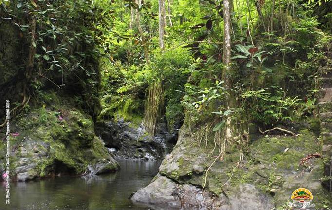 Réouverture de la Vallée de la Fautaua