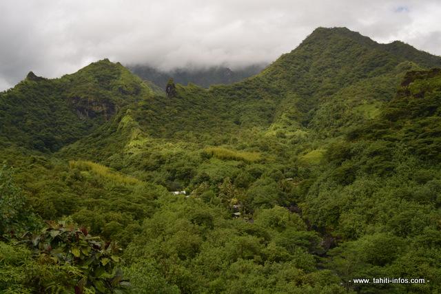 le haut de la vallée de la Papenoo vu depuis le relais de la Maroto.