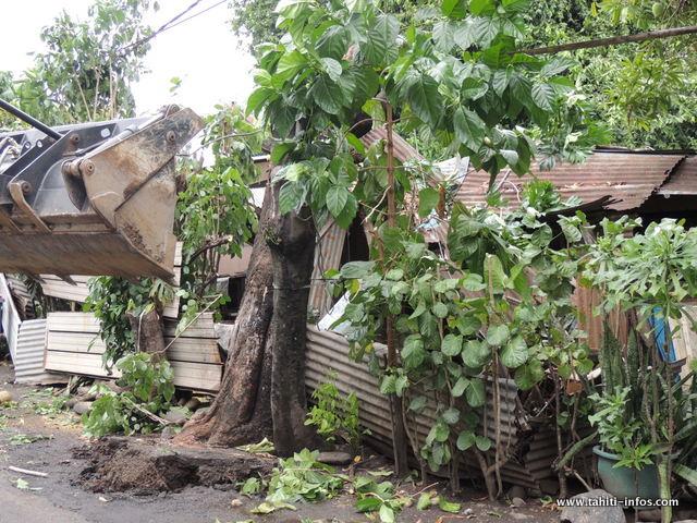 Chutes d'arbres à Papeete, une maison détruite à Taunoa (Diaporama)