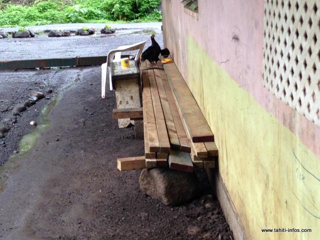 Tehina Temahahe a reçu du bois, des contreplaqués, de la peinture et des clous, mais pas de tôles.
