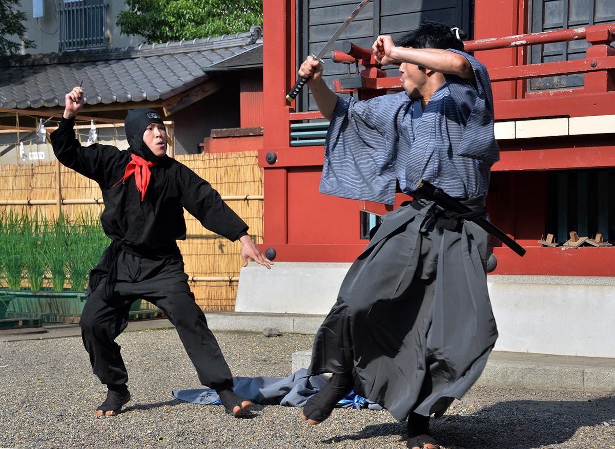 Région japonaise cherche ninjas: les étrangers postulent en masse