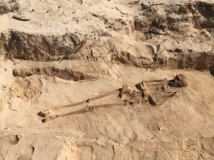 Le squelette de l'une des victimes de Corneliszoon.