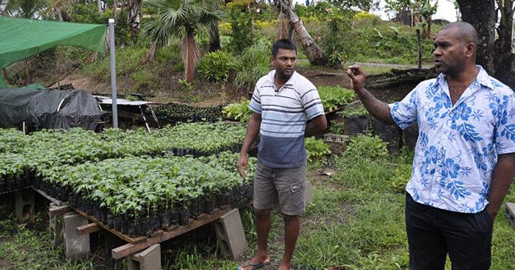Un millier de jeunes bénéficieront du projet « Du champ à l'assiette »