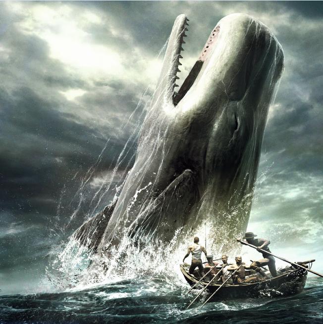 Moby Dick restera le chef d'œuvre d'Herman Melville ; on croise parfois des cachalots dans les eaux des Marquises, plongeurs et pêcheurs l'assurent, mais ces animaux restent très rares à observer.