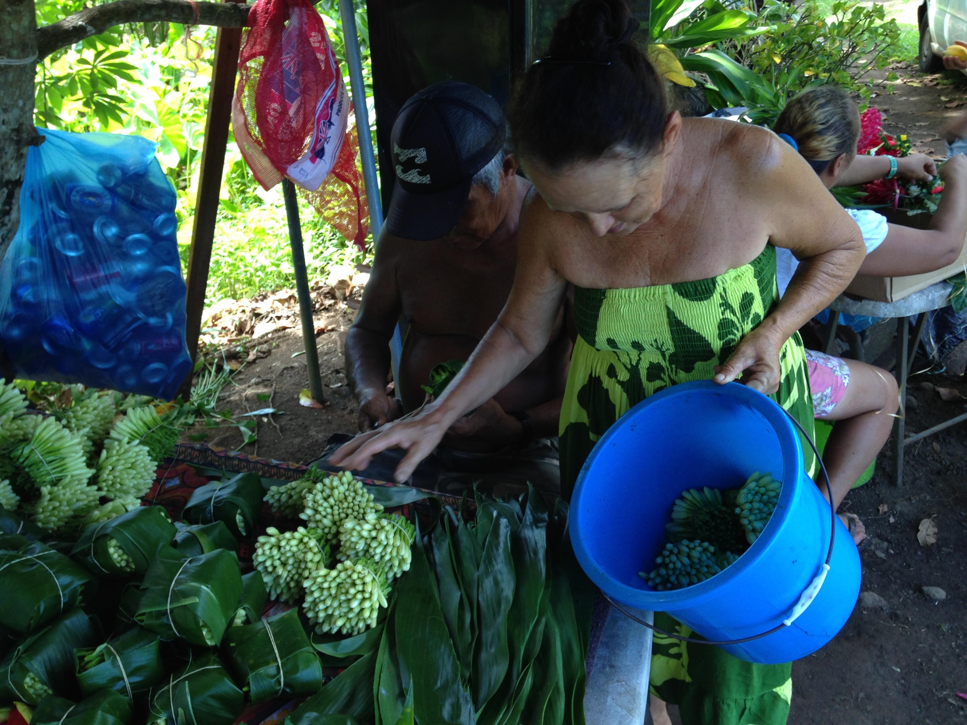 Juliette est sur le domaine du territoire depuis 2005. Elle a en sa possession, 1 500 pieds de Tiare Tahiti