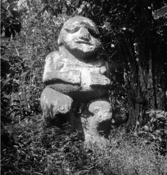 Le gros tiki dans la brousse de Raivavae dans les années 1930. Photo Pierre Verger
