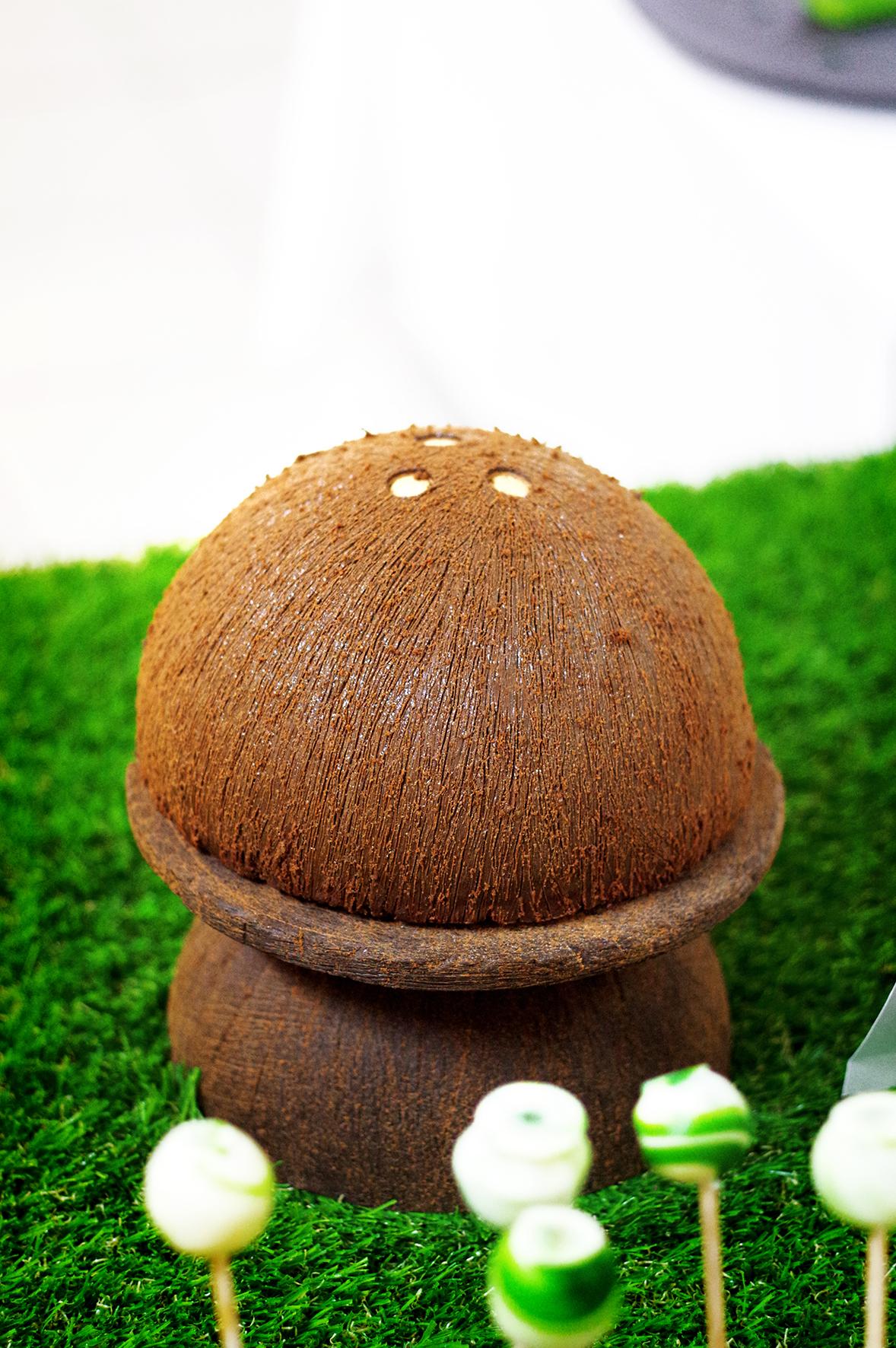 Une création originale de METAIS Fabrice: second lauréat du concours. Un entremets Valrhona (marque de chocolat) imitant de manière bluffante une noix de coco. Le niveau était au rendez-vous de l'évènement.