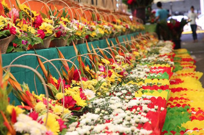 Une 7e édition des Floralies du 26 mai au 5 juin