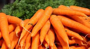 Le gène qui rend la carotte orange identifié, un atout pour la santé