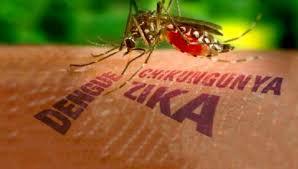 Premier cas de virus Zika détecté à Singapour