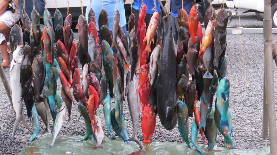 Pêche sous marine : 5ième et 6ième manche du championnat individuel 2016 sélectives pour le mondial