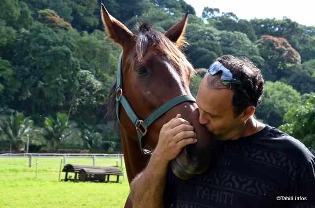 Tamatoa Lotte a fait venir de nombreux chevaux sur le fenua pour relancer les courses