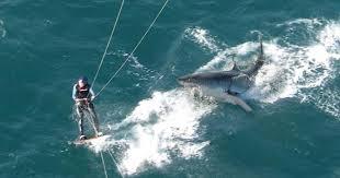 N-Calédonie: un kitesurfeur attaqué par un requin à Nouméa