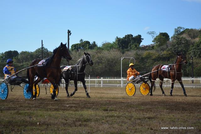 Hippodrome :  La première course équestre de l'année 2016 aura finalement lieu le dimanche 3 juillet (Màj)