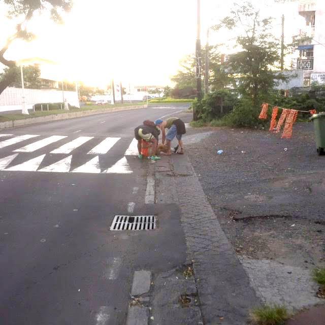 Agression en pleine rue : deux jeunes en garde à vue et un septuagénaire à l'hôpital