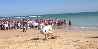 Charente-Maritime : 13 tortues remises en liberté à l'Ile de Ré