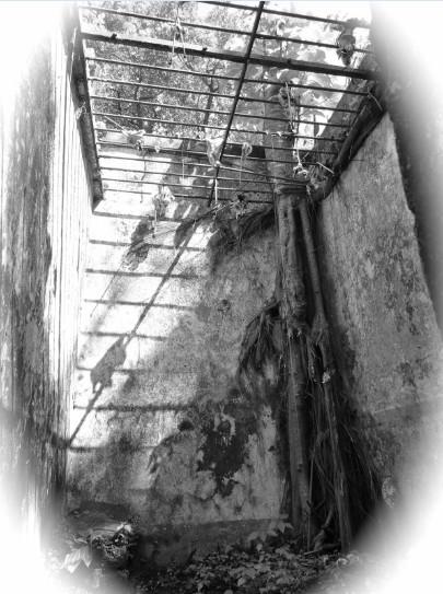 Une des cellules du bagne de Guyane où l'aîné des Rorique, Léonce, décéda le 30 mars 1898, victimes des conditions de vie et des fièvres.