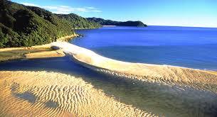 Grâce à des dons, une plage paradisiaque rendue à la Nouvelle-Zélande
