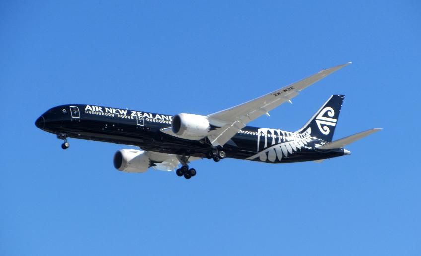 Le bel oiseau noir volera dans le ciel de Tahiti à partir du mois d'octobre