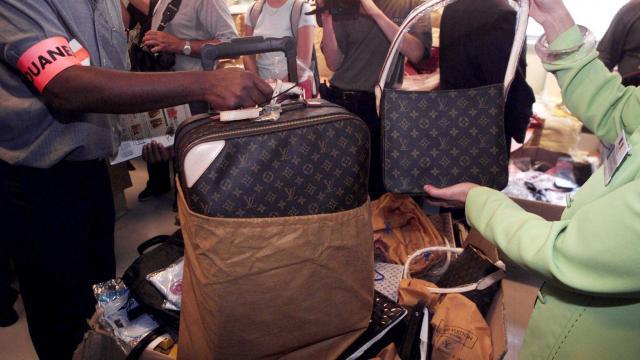 Des tortues vivantes scotchées sous les aisselles, des colibris dans le caleçon, des faux bagages Vuitton… A Roissy, les douaniers traquent les souvenirs de vacances interdits. | AFP