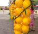 http://www.tahiti-infos.com/Un-week-end-pour-feter-l-orange-a-Punaauia_a162224.html