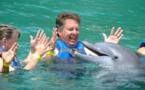Les Etats-Unis veulent interdire la baignade avec des dauphins à Hawaï