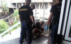 Il caillasse la gendarmerie pour retourner en prison
