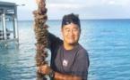La génétique fait briller la perle de Tahiti