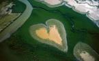 Mission scientifique en Nouvelle-Calédonie pour un inventaire de la biodiversité
