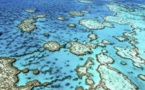 La Grande barrière de corail ne se meurt pas, assure Canberra