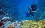 Australie: le cyclone aggrave l'inquiétude pour la Grande barrière de corail
