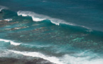 L'expédition de la pirogue Fa'afaite a révélé un important blanchissement corallien à Rurutu