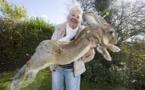 Un lapin géant meurt dans une soute de United Airlines