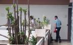 Bora Bora : Le guide touristique aux mains baladeuses en prison
