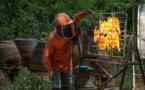 En Thaïlande, quand le poulet solaire devient populaire