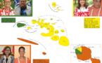 Législatives 2017 : nouvelle alliance Tahoera'a-Tavini pour le 2nd tour ?
