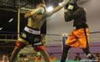Boxe Pro – Ceinture RBO : Cédric Bellais vainqueur aux points