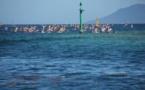 Va'a – Air Tahiti Race : Kévin Céran-Jérusalémy est prêt pour les championnats du monde