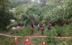 Les agents communaux de Mahina se forment au bûcheronnage