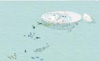 Le rêve polynésien de deux architectes Belges