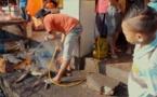 Indonésie: émoi après une vidéo de chiens abattus sur des marchés