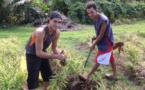 Tuhani Pugibet, un jeune agriculteur ambitieux