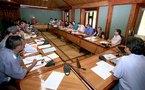 Subventions aux communes : le CESC planche sur le projet de loi du pays