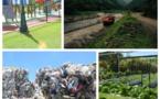 Territoriales : les protecteurs de l'environnement interpellent les candidats