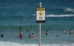 Alerte au requin: une compétition de surf annulée en Australie